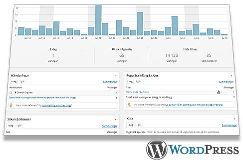 Wordpress statistics controlpanel